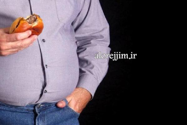 چاقی، ریشه در مغز دارد!