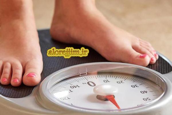 باکتری های شکمی بر چاقی تأثیر میگذارند